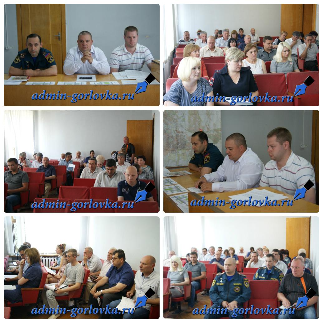 collage photocat 6f40c