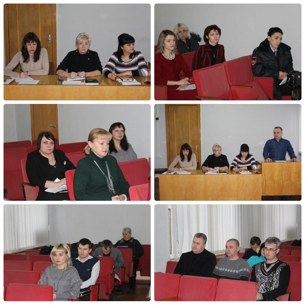 collage photocat33 d1a5e